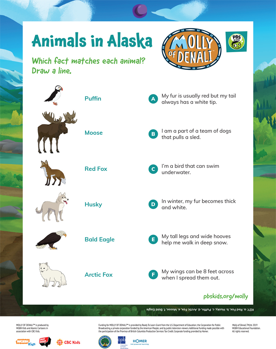 Molly of Denali Animals in Alaska