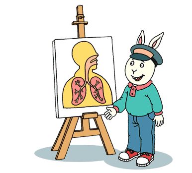 Buster stands next to a chart showing the lungs.
