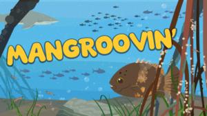Mangroovin'