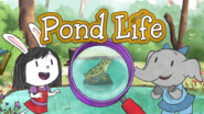 Game icon for Elinor Pond Life.