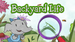 Elinor Backyard Life
