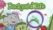 Game icon for Elinor Backyard Life.