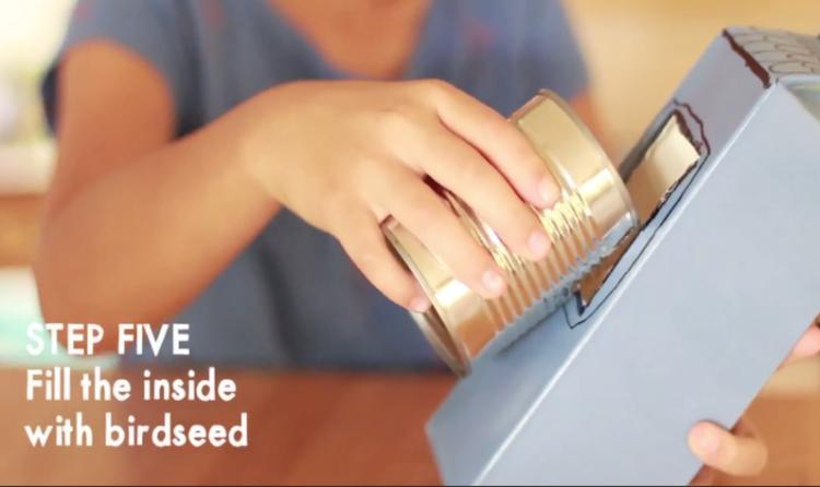 Image of DIY bird feeder step 5