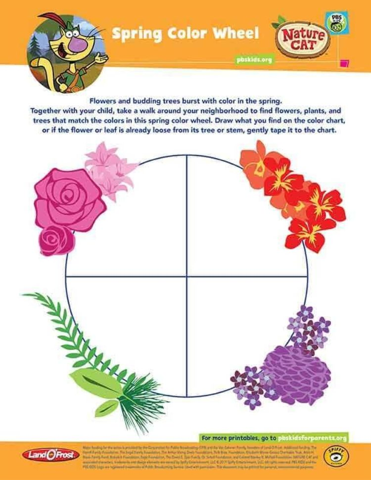 Spring And Fall Color Wheel Kids Coloring Pbs Kids For Parents