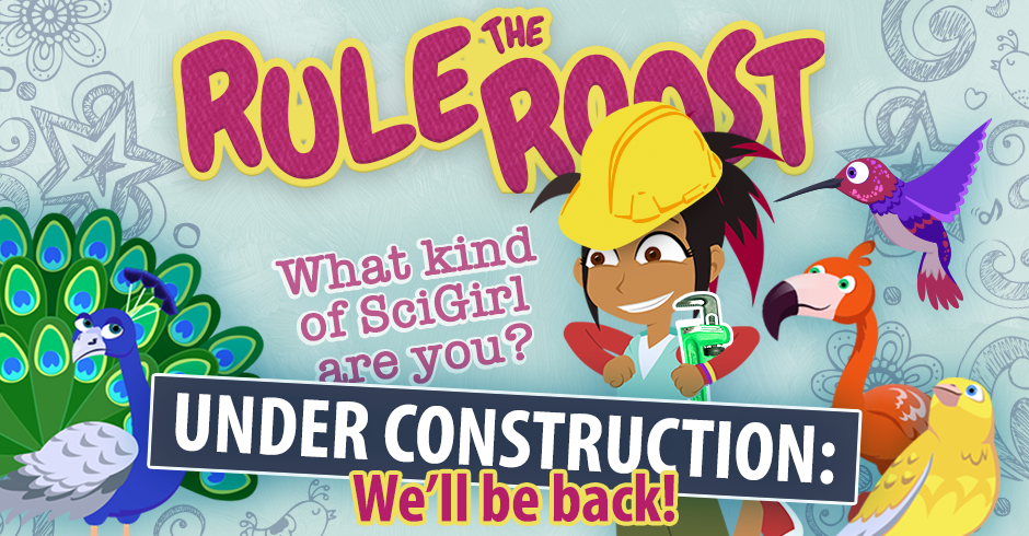 Rule the Roost Under Construction