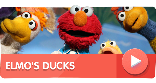Elmo's Ducks