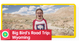 Big Bird's Roadtrip: Wyoming