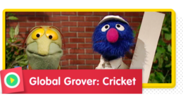 Global Grover: Cricket