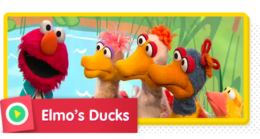 Elmo sings a song about numbers and ducks.