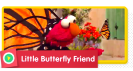 Elmo sings about his butterfly friend.
