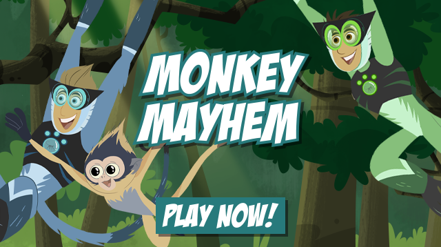 Monkey Mayhem Card