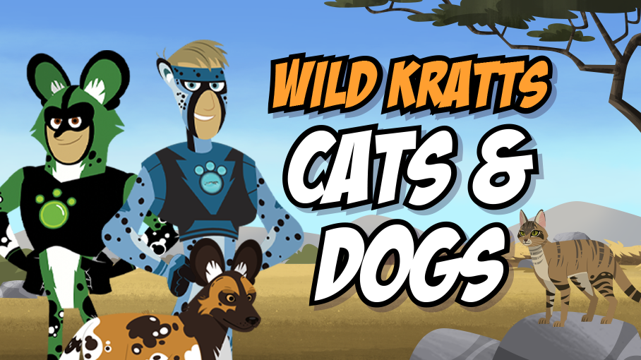 Cats & Dogs Game